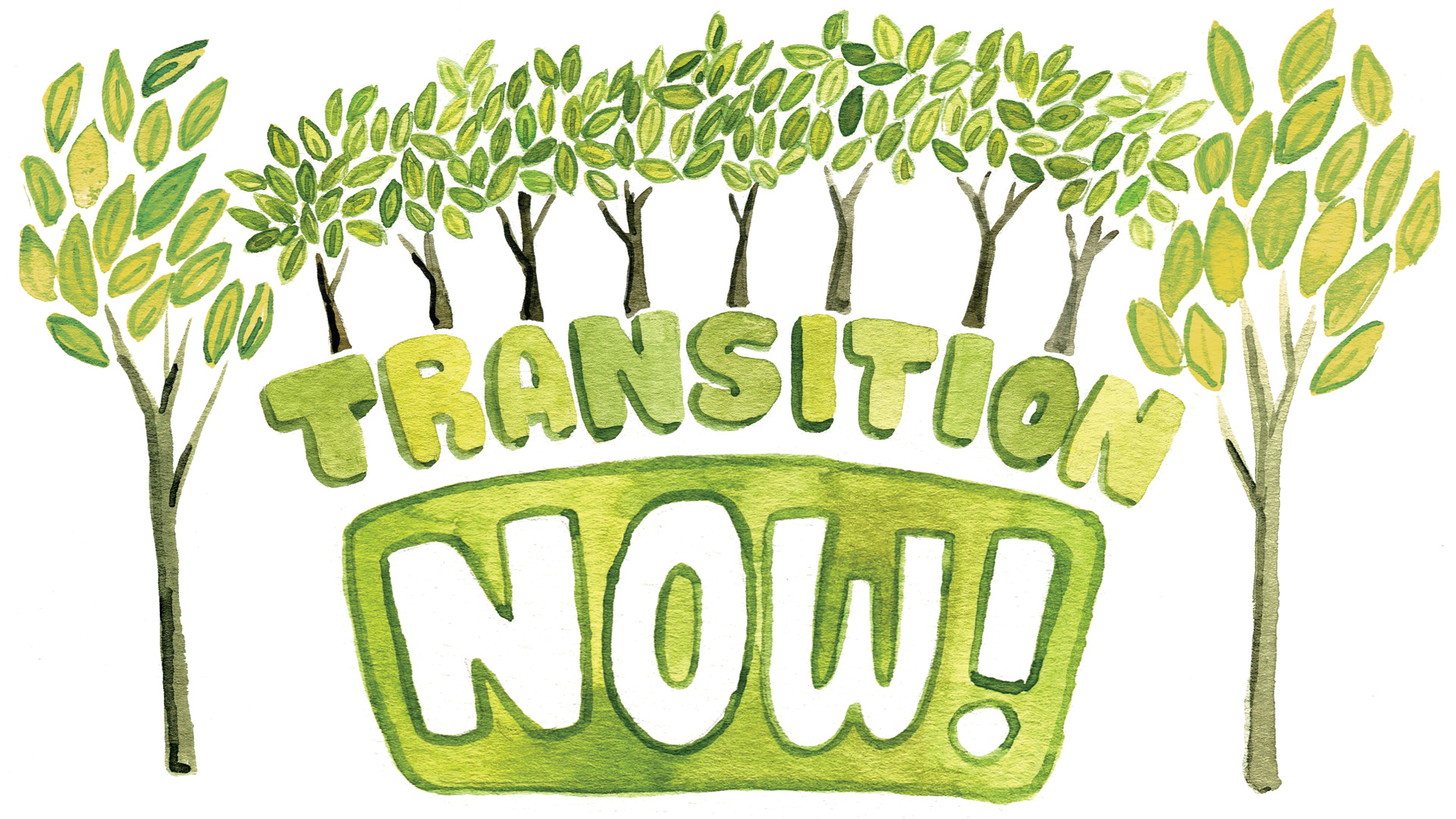 Transition Now Sketch